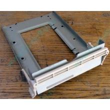 Заглушка для корзины SCSI дисков 55.59903.011 для серверов HP Compaq (Купавна)