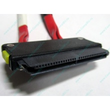 SATA-кабель для корзины HDD HP 451782-001 459190-001 для HP ML310 G5 (Купавна)