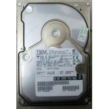 Жесткий диск 18.2Gb IBM Ultrastar DDYS-T18350 Ultra3 SCSI (Купавна)